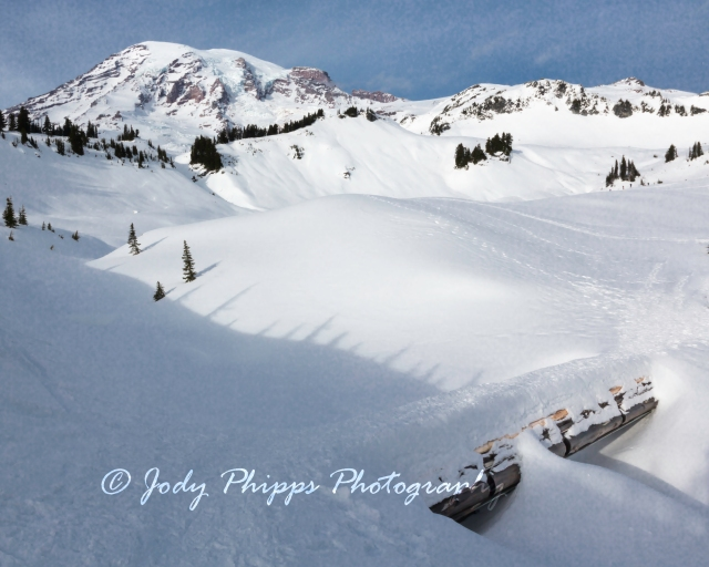 January 01, 2014 Mt Rainier National Park 162