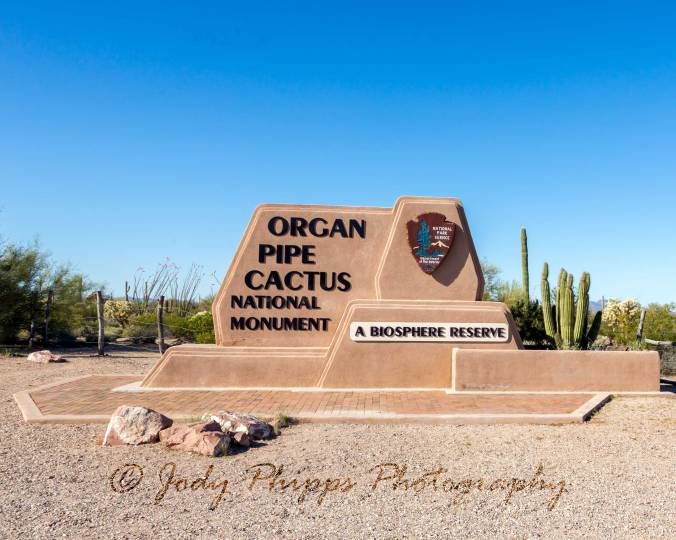 The entrance to Organ Pipe Cactus National Monument.