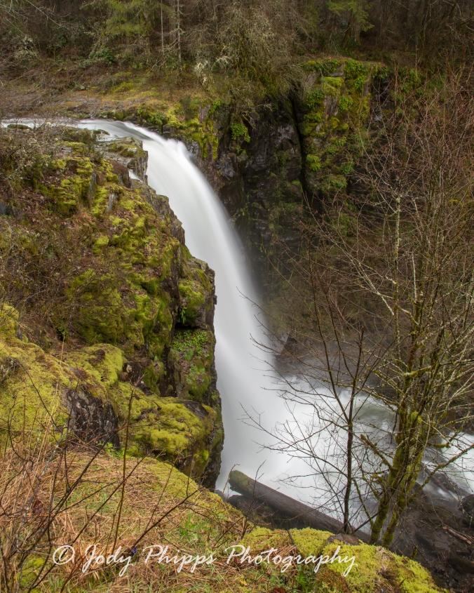 Big Tree Creek Falls