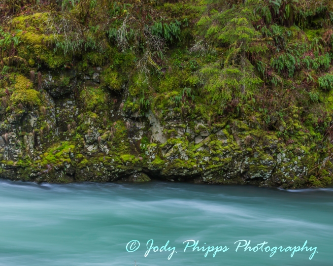 East Fork Lewis River Close up 2
