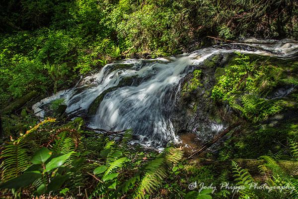 Ludlow Falls in Port Ludlow, Washington.